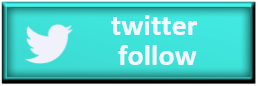 twitter follow web button
